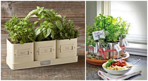 herb garden gift ideas 21 gift ideas for healthy cooks emily bites