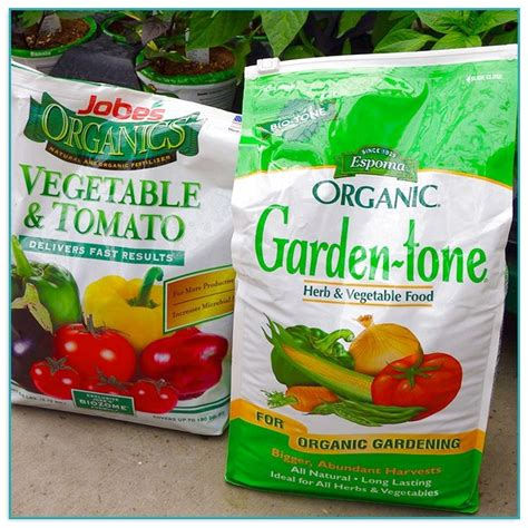 Best Organic Fertilizer For Vegetable Garden Vegetable Garden Fertilizer Recommendations