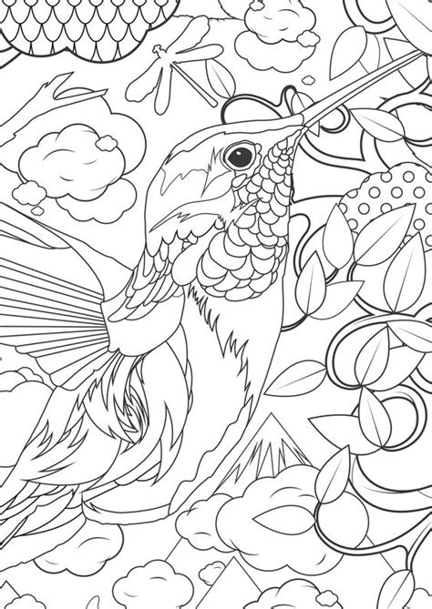 coloring pages for adults hummingbird hummingbird coloring pages bestofcoloring com