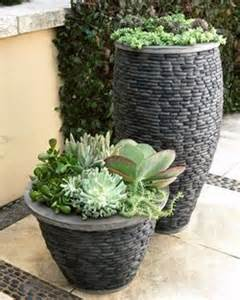 choosing containers for larger plants www coolgarden me