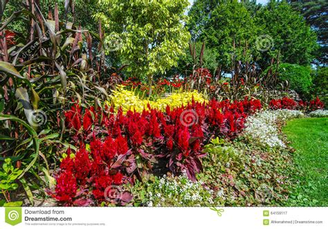 Variety Of Flowers For Garden Gardens Of Color Variety Of Flowers Stock Photo Image 64159117