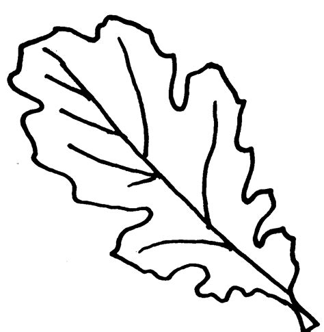 Coloring Pages Oak Leaf | oak leaves coloring pages clipart panda free clipart