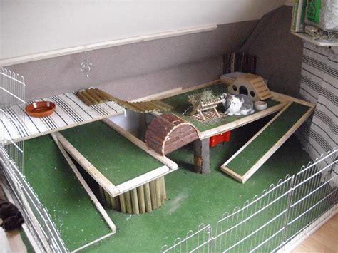 kaninchen haltung wohnung kaninchen apartment kaninchen