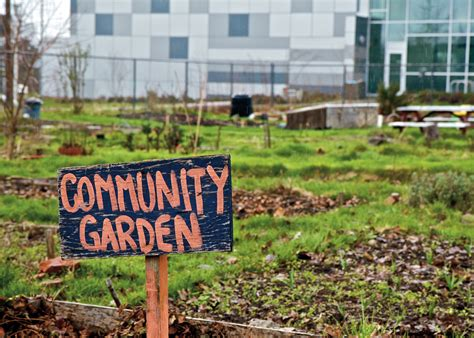 What Is A Community Garden by How To Develop A Community Garden Communication4health