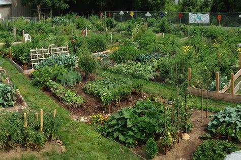 40 best summer 2015 studio community garden images on community garden planning meeting yoga home
