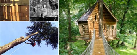 squirrel design tree houses fabulous treehouses by squirrel design heart home