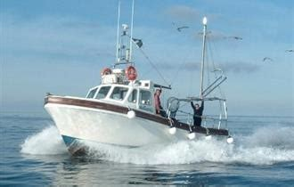 boat trips in newquay cornwall fishing boat trips newquay