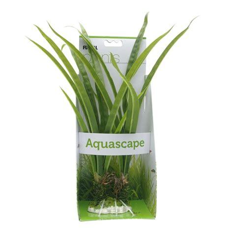 fluval aquascape fluval aquascape acorus 36 cm zone aquatique