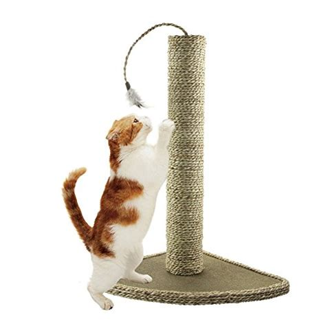 cat scratchers amazon catit designer hourglass scratching cool cat tree plans scratching post