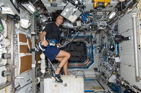 nasa expedition 32 flight engineer sunita williams