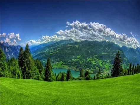 green garden  beautiful sky hdtv p photography