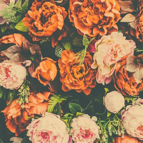 Orange Floral floral background with orange and pink flowers photo