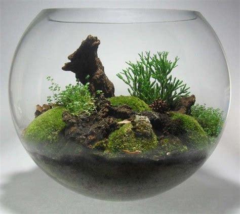 My M Ms Glass Bowl fish bowl terrarium t e r r a r i u m s