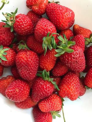 Strawberry St312 Omega 2 8inch foods for strawberry crisp with nutty hemp seed