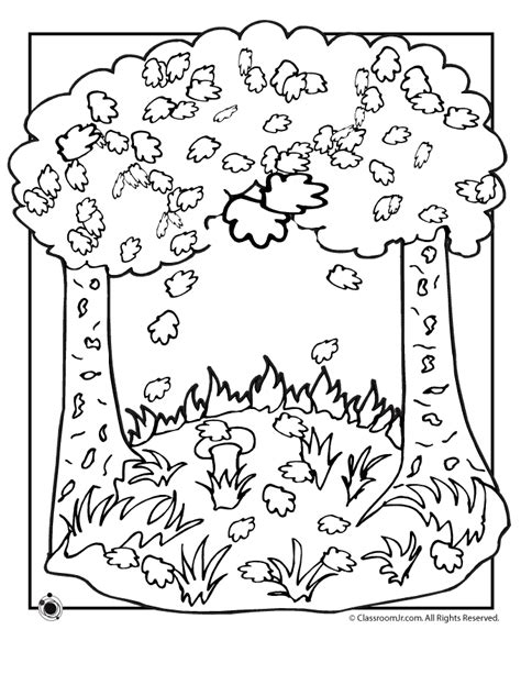 four seasons coloring page sketch coloring page