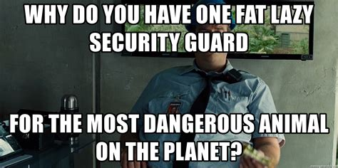 Security Meme - why do you have one fat lazy security guard for the most