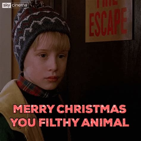 merry christmas gif  sky find share  giphy