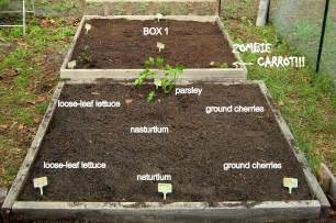 garden layout floridahoma