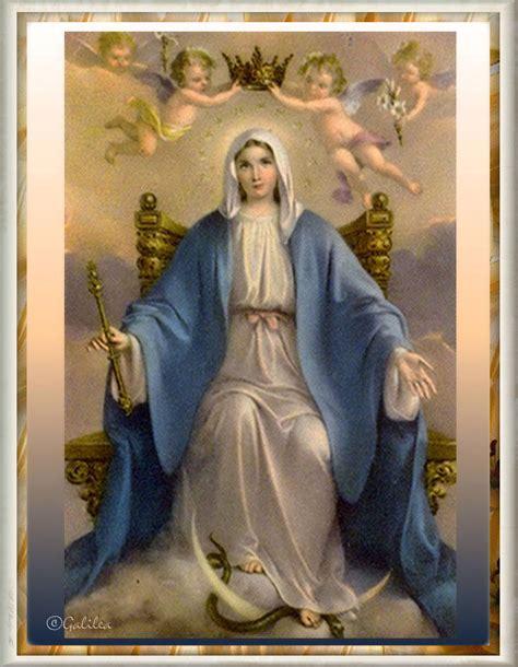 imagen de virgen maria reina testimonios para crecer flor del 31 de mayo mar 237 a reina