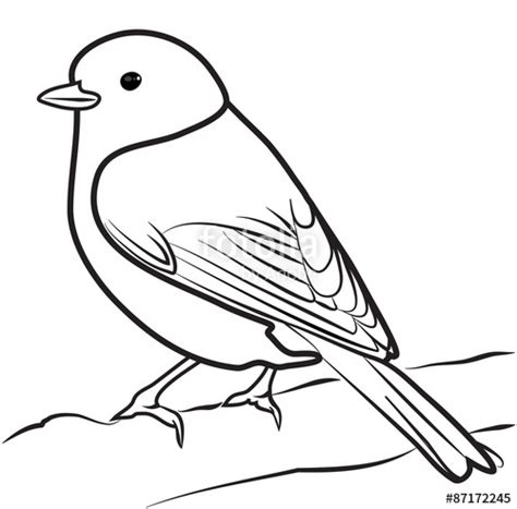 migratory birds coloring pages quot bird outline vector quot stock image and royalty free vector