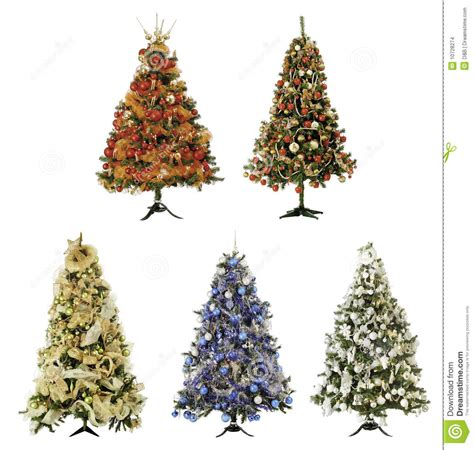 christmas trees stock images image 10728274