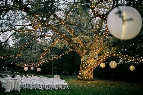 moonlight pennsylvania wedding under a sparkling tree at