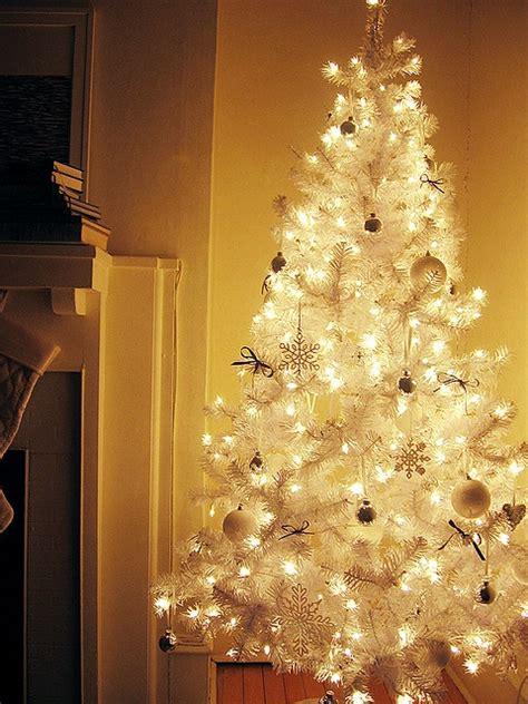 beautiful collection  gorgeous white christmas trees