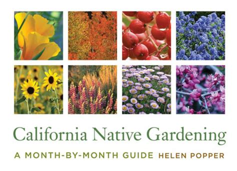 the california guide to growing without going books california gardening with helen popper bookshop