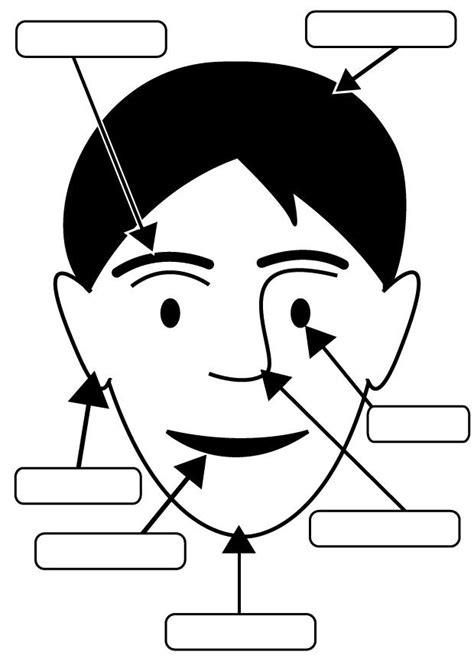 partes de la cara dibujo para colorear dibujo para colorear cara img 26951