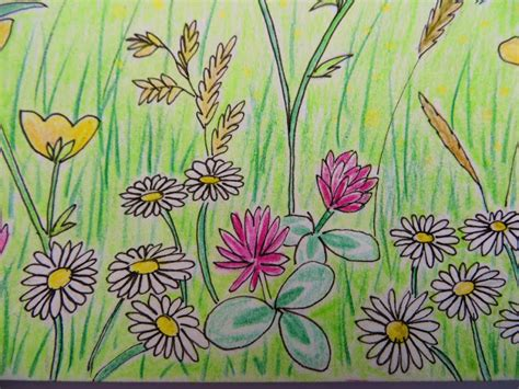 how to draw a garden with flowers flower garden drawing for decorating clear