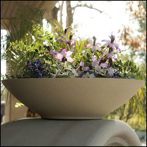 low bowl planters 48 quot dia x 11 quot h modern low bowl planter