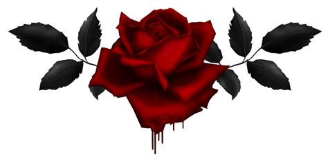 bleeding black rose tattoo the ultimate a z of names 200 awesome names