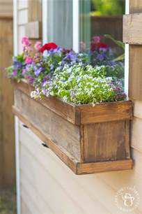 diy window box and shutters catz in the kitchen