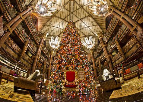 animal kingdom lodge christmas tree flickr photo sharing