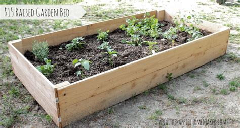 elevated garden beds diy diy cedar raised garden bed the happier homemaker