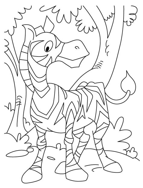 zebrafish coloring page free coloring pages of a zebra fish