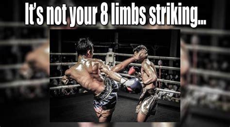 Muay Thai Memes - muay thai meme