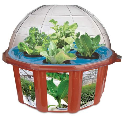 indoor garden kit hydroponic gardening kits smalltowndjs com