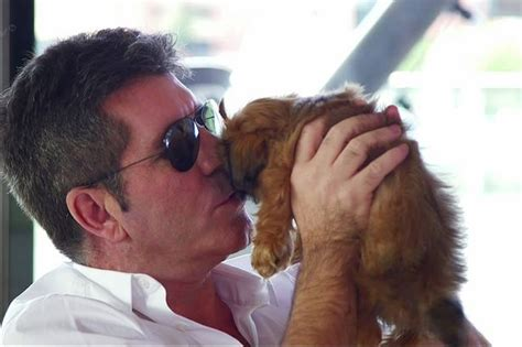 simon cowell dogs simon cowell says we must end the cruel of dogs in china mirror