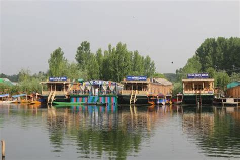 house boat srinagar price young monalisa houseboat lodge reviews price