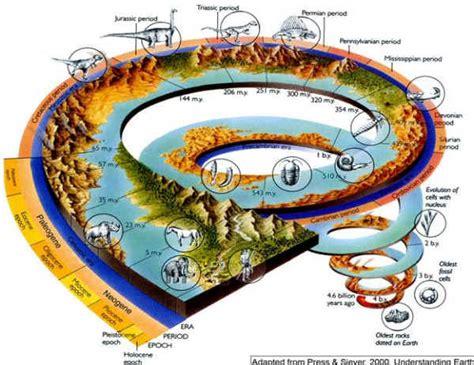 what is background extinction paleobiological background to mass extinction saving