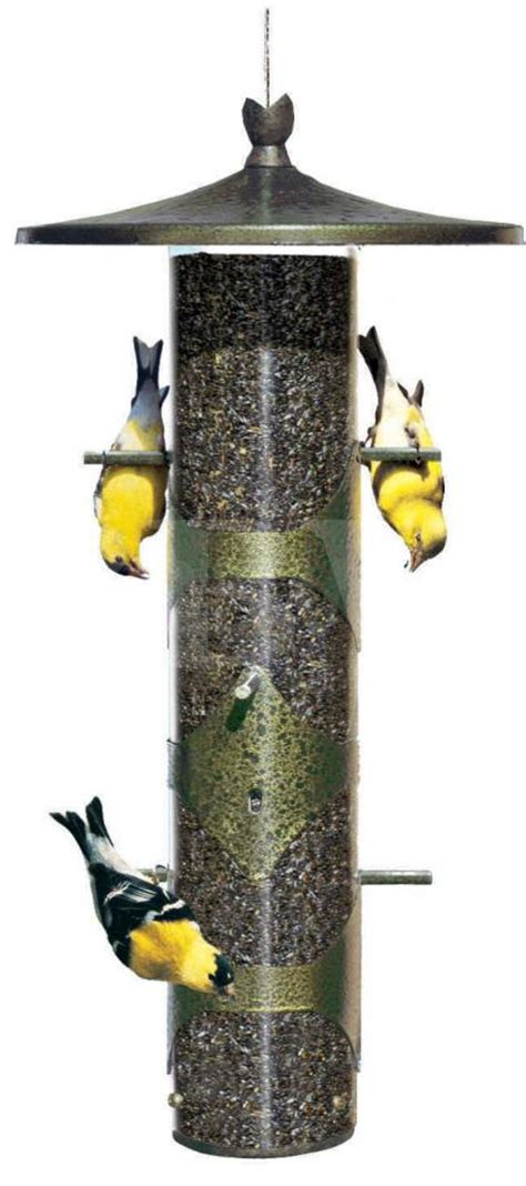 perky pet colibri upside down finch feeder best price