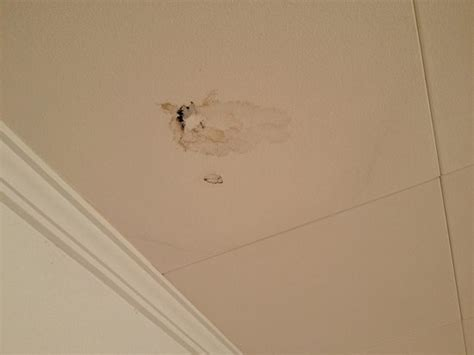 Water Through Ceiling by Water Marks And Holes In Ceilings Where Water Poured