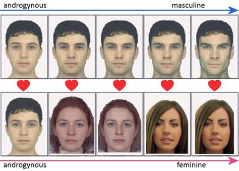 facial masculinization surgery looking for facial masculinization surgeons