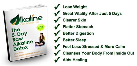 Alkaline Diet Detox Symptoms by 30 Day Diet Plan Seotoolnet