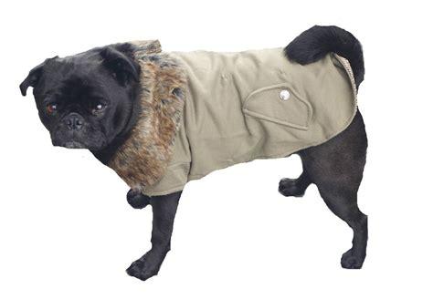 coats for pugs uk coat fur collar s m l jacket pet clothes clothing jumper apparel pug ebay