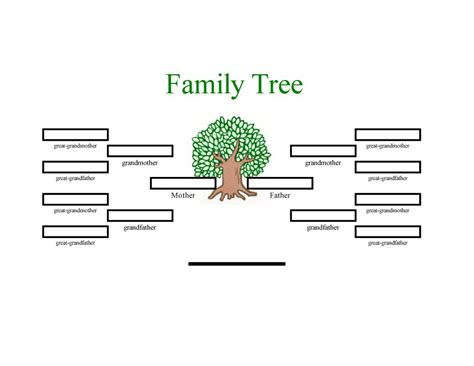 free family tree template family tree template with cousins aunts and uncles www