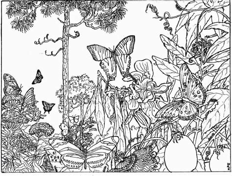 nature alive forest hd coloring pages for adult
