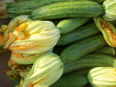 zucchine fiori fiori di zucchina al forno ripieni di riso ieri oggi