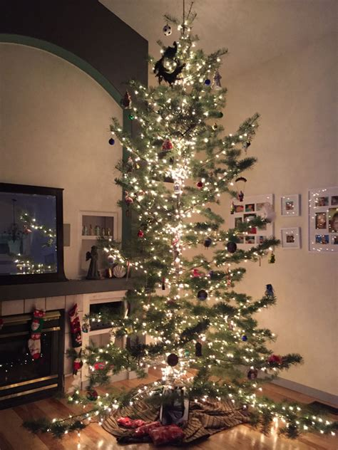 native christmas tree beatiful tree